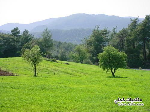اجمل مناطق اللاذقية مدينه اللاذقية