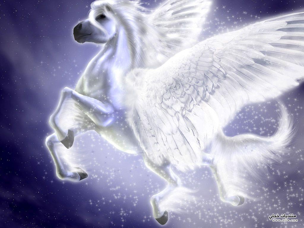 اجمل خيول الانمي 2014 احصنه