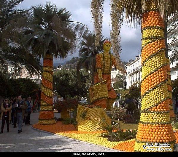 احدث مدينة الليمون والبرتقال 2015