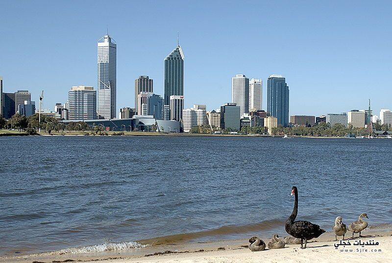 احدث بيرث استراليا استراليا معلومات