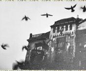 رمزيات ماسنجر جديده 2013 رمزيات