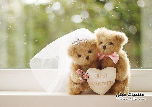 عريس وعروسة عرسان رومنسية عرسان