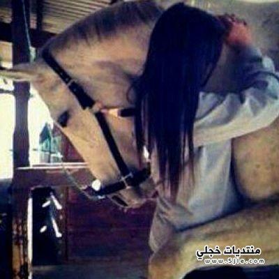 توبيكات خيول