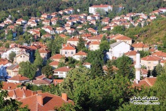 معلومات مدينة فيدين البلغارية