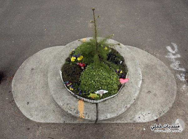 اصغر حديقة العالم اصغر حديقة