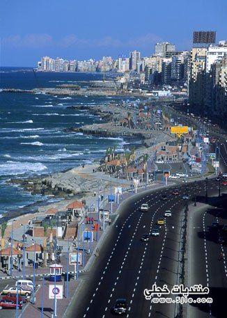 مدينة الأسكندرية 2013 مدينة الأسكندرية