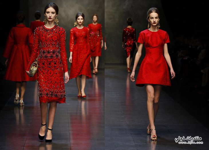 Fashion Dolce & Gabbana 2014