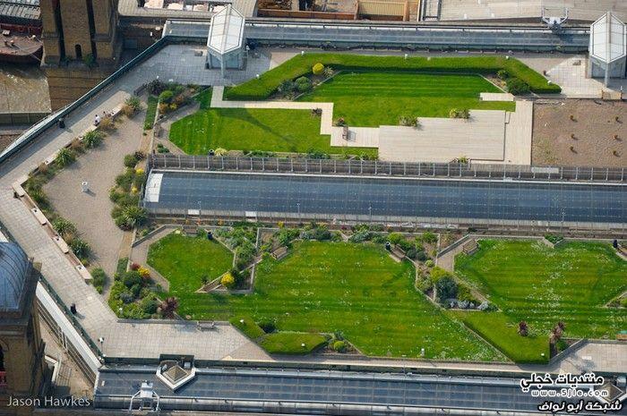 جمال حدائق لندن 2013 حدائق