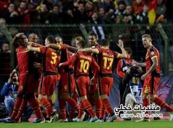 منتخب بلجيكا العالم 2014 منتخب
