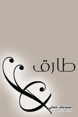 معنى طارق