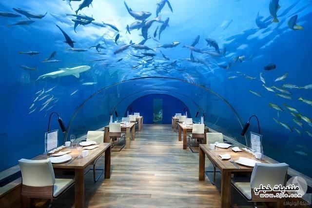 افضل مطاعم العالم