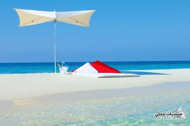فنادق المالديف فندق المالديف