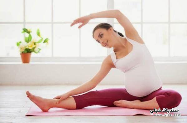 برودة الحامل المحافظة برودة الحامل