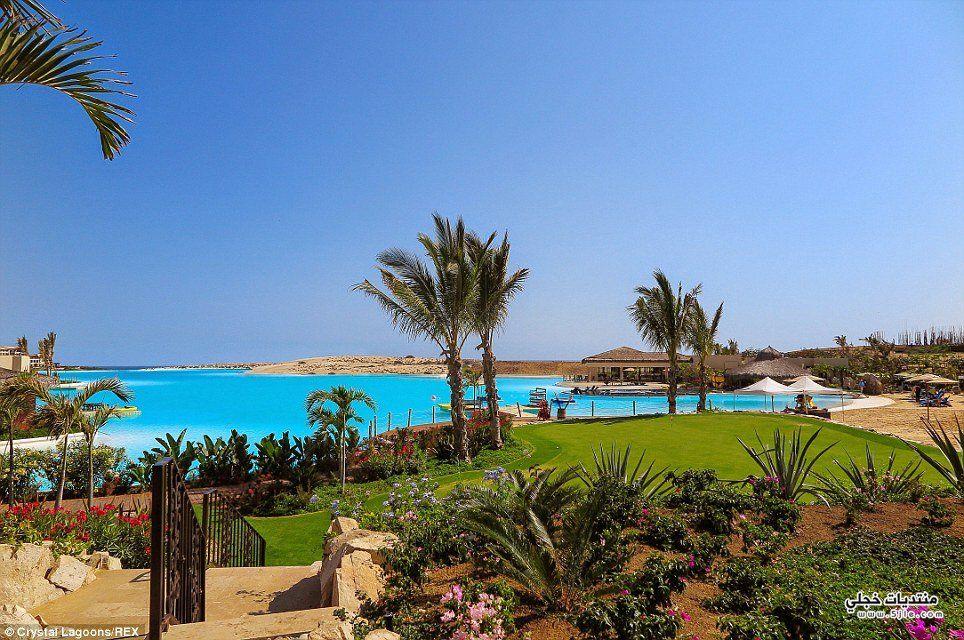 اكبر حمامات سباحة العالم اكبر