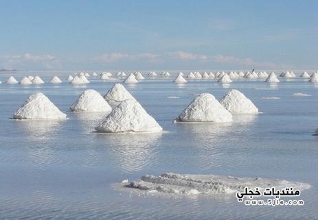 اضرار الملح الابيض