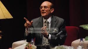 محمد صبحى 2014 الفنان محمد