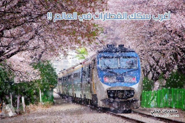 اغرب قطارات العالم اغرب قطار
