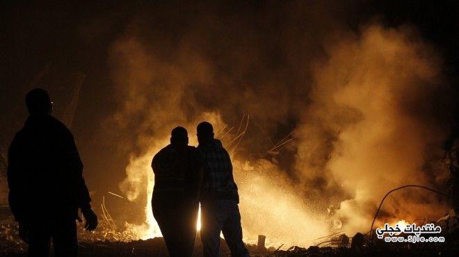 المستوطنون اليهود يحرقون شجرة زيتون