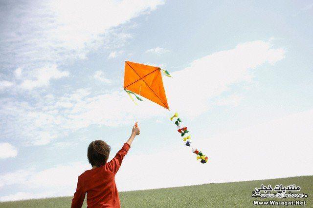 طائرات ورقية 2014 الطائرات الورقية