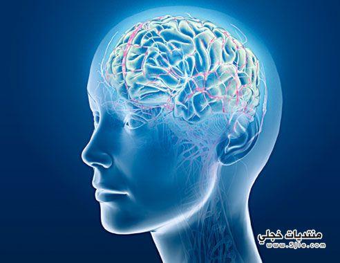 دراسة تثبت دماغ المسنين قادر