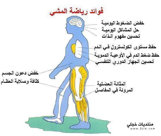 الطريقة الصحيحة لرياضة المشي فوائد المشي للتنحيف اهمية المشي للتخسيس PIC-762-1378728419.j