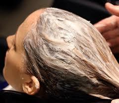 البلسم انواع الشعر