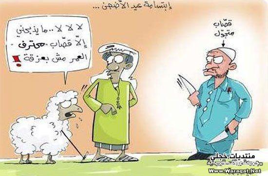 كاريكاتير الاضحى 2014