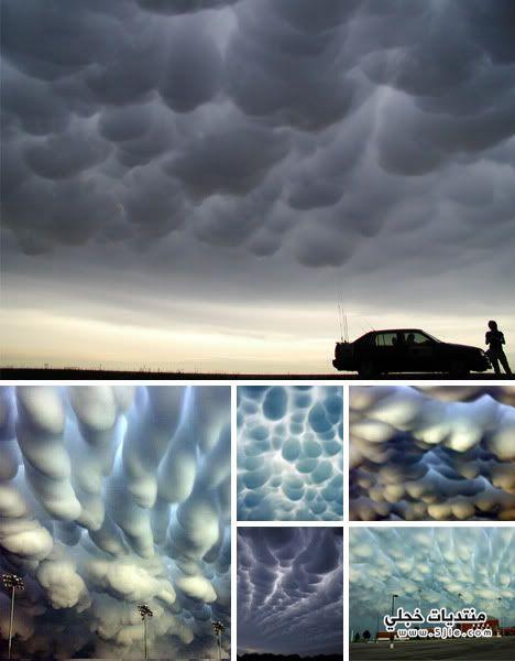 الصور التي حيرت العلماء يجدوا