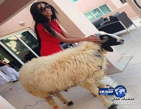 دنيا بطمة خروف العيد