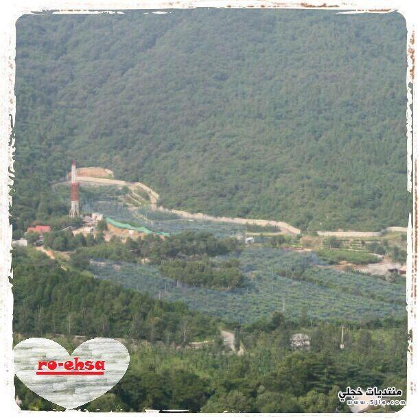 حديقة الجبل العطري (حديقة شيانغشان)