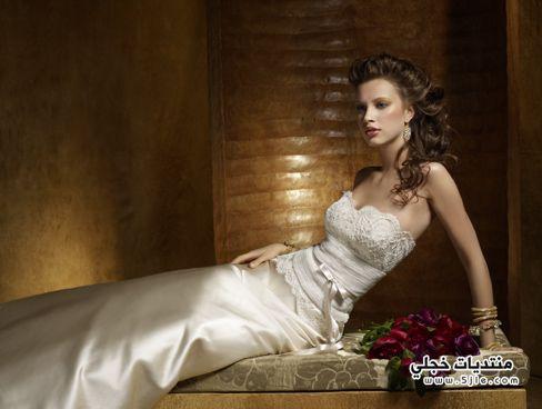 فساتين زفاف 2013 فساتين زفاف