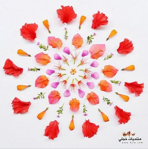 ابداع فنان صيني بورق الورود