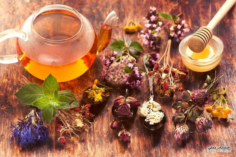 علاج التهاب المعدة بالاعشاب