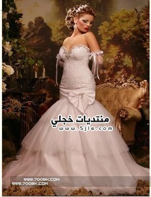 فساتين زفاف ايلي 2013 ازياء
