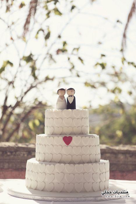 تورتات عرايس تورتات زفاف تورتات