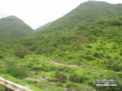 عمان السياحه عمان معلومات عمان