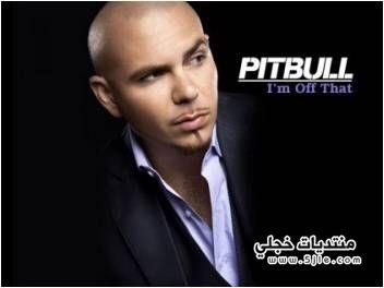 photo pitbull 2013 بيتبول 2013