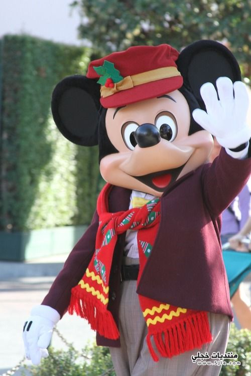 ���� ���� 2013 mickey mouse