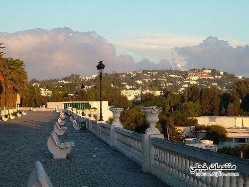 تونس الرائعة 2013 ومعلومات سياحيه