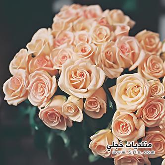 ياليت الورد يذبل ياليت الدمع