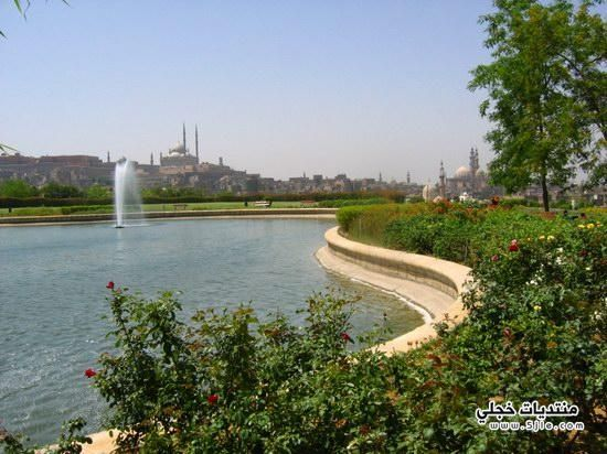 حديقة الازهر 2014