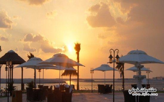 جزيرة لبنان 2014