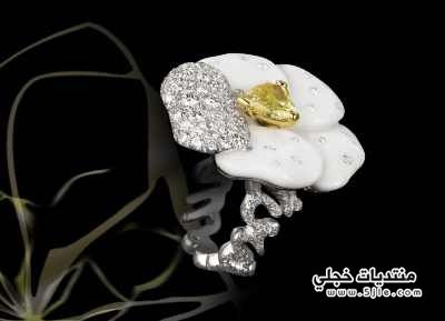 مجوهرات ناعمة 2014