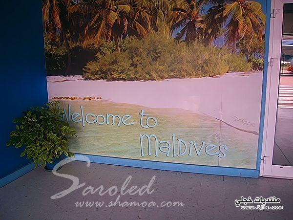 السياحة المالديف 2014