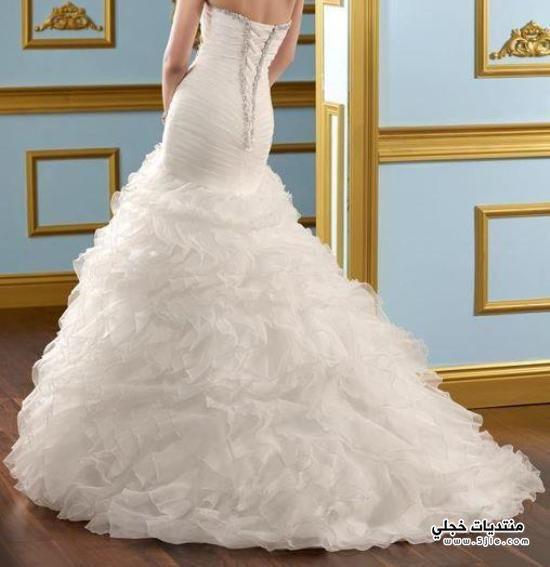 فساتين زفاف مدرج 2014 فساتين